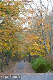 89 Whisperwood Way Photo #27