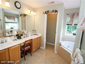 29463 Windy Hill Circle Photo #15
