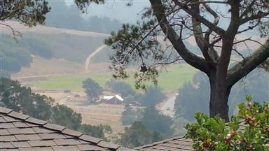 166 Del Mesa Carmel Photo #8