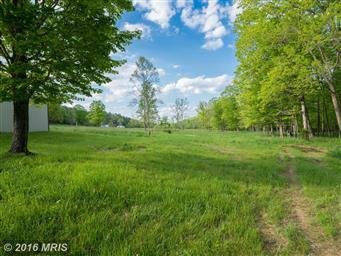 1389 Creek Road Photo #20