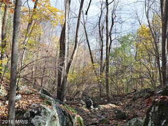 80 Rattlesnake Hollow Lane Photo #17