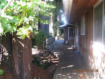 144 Woodland Drive Photo #9
