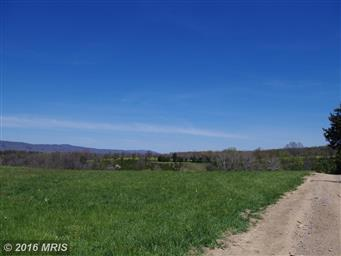 1239 Rileyville Road Photo #11