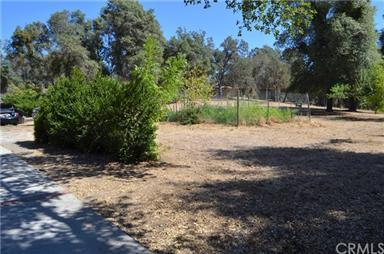 50051 Deer Meadow Way Photo #46