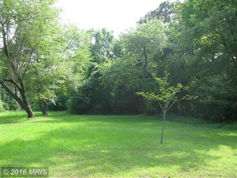 49778 Fresh Pond Neck Road Photo #26