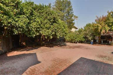 202 Central Avenue Photo #18