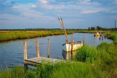 8407 Fishing Island Road Photo #30