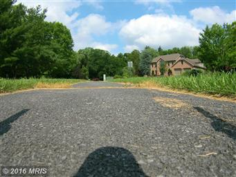 95 Limekiln Drive Photo #30