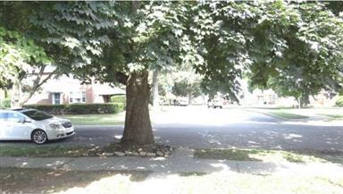 429 Park Drive Photo #2