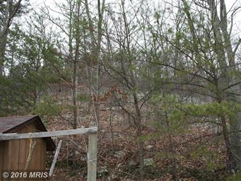 609 WHIPPOORWILL LN Photo #19