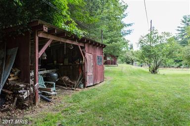 20542 Dovesville Road Photo #24