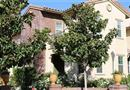 28469 Herrera Street #65, Valencia, CA 91354