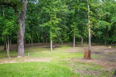 17050 Hickory Trail Photo #6