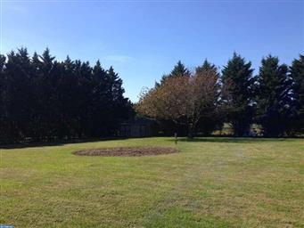 3863 Wheatleys Pond Road Photo #22