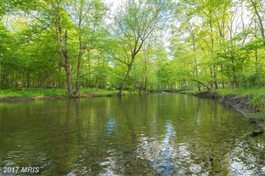 1389 Creek Road Photo #7