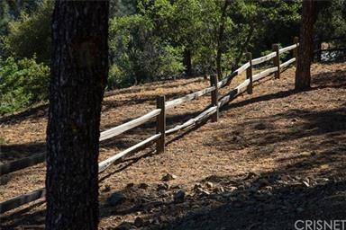13609 Yellowstone Drive Photo #4