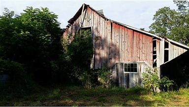 5311 Brunswick Road Photo #5