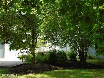 436 Pear Tree Point Road Photo #2