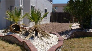 12290 Tierra Mar Way Photo #3
