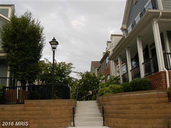 300 Dixon Street #504 Photo #3