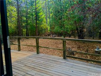 10764 Rosa Trail Photo #5