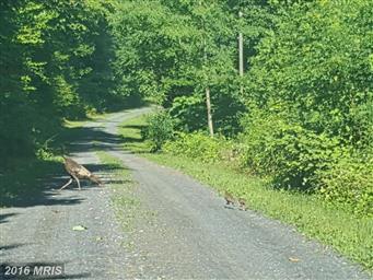 80 Rattlesnake Hollow Lane Photo #12