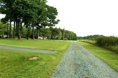 4749 Owl Hollow Lane Photo #26