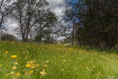 3979 Oak Grove Road Photo #12