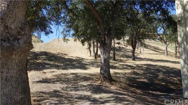 17520 Rancho Tehama Road Photo #29