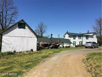 384 Jewell Hollow Road Photo #28