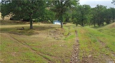 3168 Wolf Creek Road Photo #29