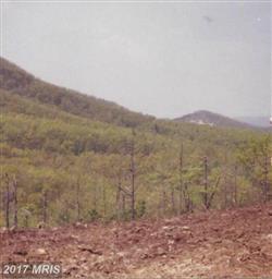 3515 Lucas Hollow Road Photo #26