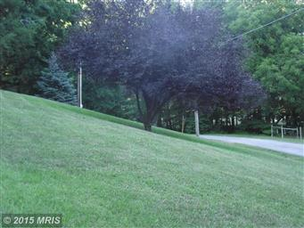 94 Lawrence W Lewis Dr Photo #18