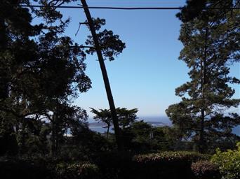 24683 Upper Trail Photo #9