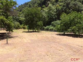 4410 Upper Lopez Canyon Road Photo #5