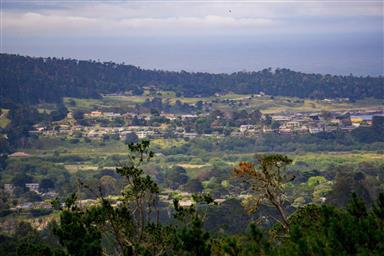 25140 Pine Hills Drive Photo #24