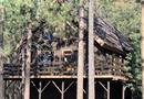 1516 Bernina Drive, Pine Mountain Club, CA 93225