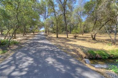 122 Country Oaks Dr 20 Acre Family Estate Photo #37