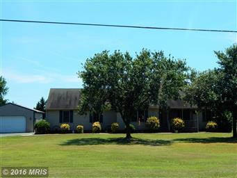 11506 Chipmans Pond Road Photo #20