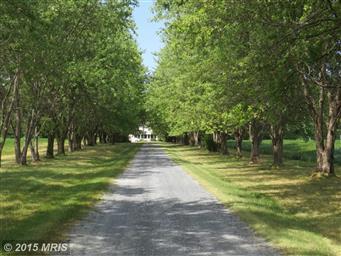 7332 Bozman Neavitt Road Photo #2