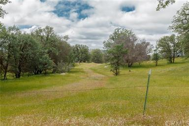 3979 Oak Grove Road Photo #53