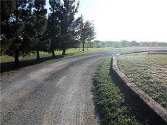 3223 County Road 389 Photo #5