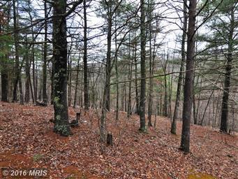 3191 Hunting Ridge Road Photo #7