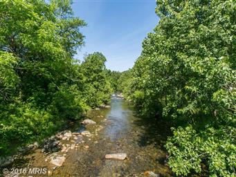 36 Meadows Lane Photo #6