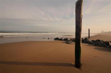 13400 Coastal Highway #407s Photo #24