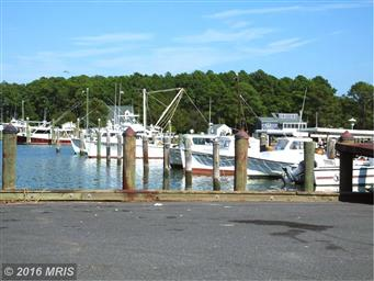 2342 Hoopers Island Road Photo #23