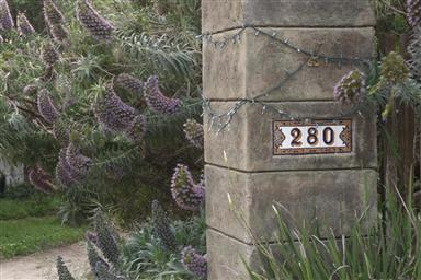 280 Grove Acre Avenue Photo #21