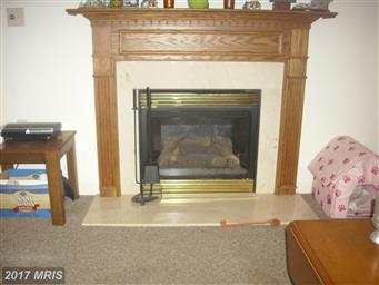 13265 Whispering Spring Drive Photo #9