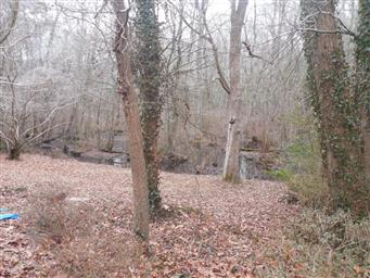 1817 Pine Way Photo #32