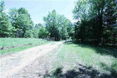 960 East Farm Road 71 Photo #23